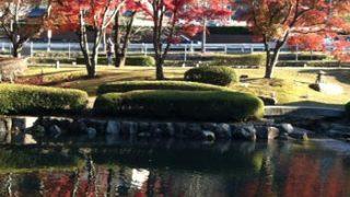 曽木公園(岐阜県土岐市)の逆さもみじをチェック