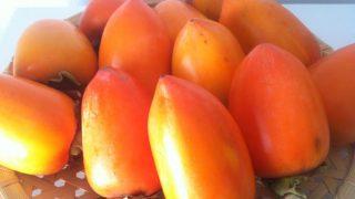 【干し柿の作り方】そうだ、干し柿をつくろう!!思い立って、渋柿を買いに行く