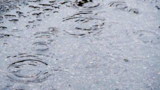 スタットレスタイヤは雨に弱いです。この先の季節にご注意ください