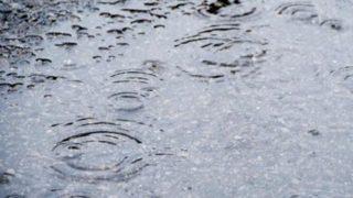 足湯と花粉症と私。なぜに、雨の日に花粉症がでる?