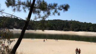 朝の湖を泳ぐ気持ちよさを知った夏
