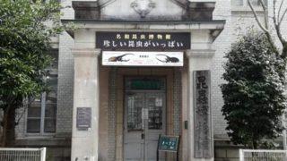 圧巻!!名和昆虫博物館(岐阜市)に行きました