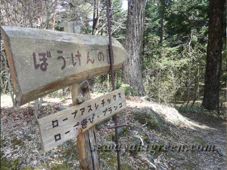 南信州ふるさと村自然園(せいなの森キャンプ場)