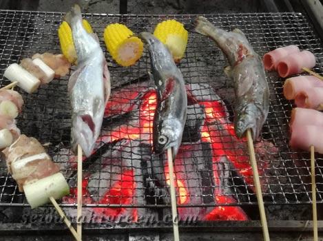 うるぎ温泉郷 森の宿 遊星館の夕食