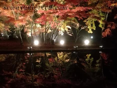 曽木公園の逆さもみじライトアップ