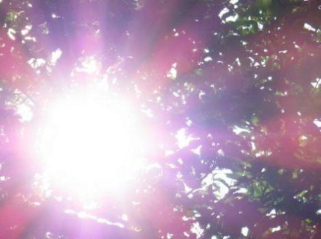 ぎらぎらの太陽