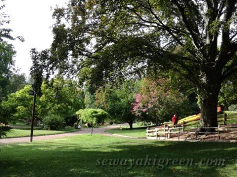 CLERMONT-FERRANDの公園